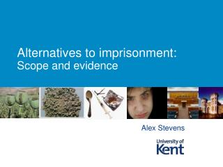 Alternatives to imprisonment: Scope and evidence