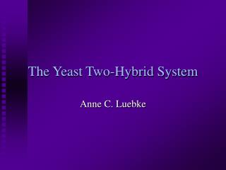 The Yeast Two-Hybrid System