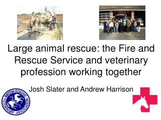 Large animal rescue: the Fire and Rescue Service and veterinary profession working together