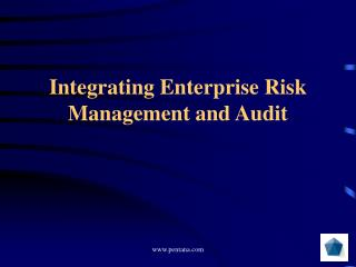 Integrating Enterprise Risk Management and Audit