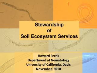 Howard Ferris Department of Nematology University of California, Davis November, 2010