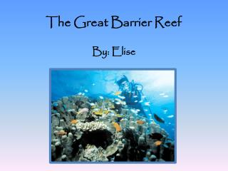 The Great Barrier Reef By: Elise