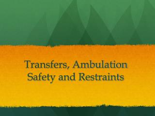 Transfers, Ambulation  Safety and Restraints