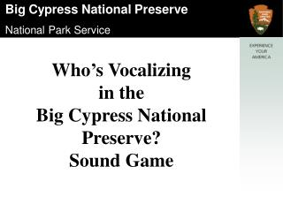 Who's Vocalizing  in the  Big Cypress National Preserve? Sound Game