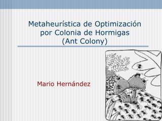 Metaheurística de Optimización  por Colonia de Hormigas  (Ant Colony)