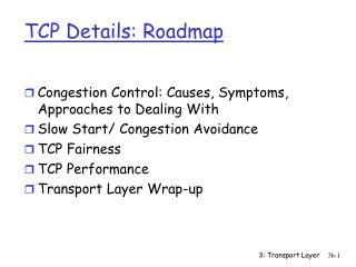 TCP Details: Roadmap