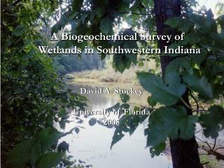 A Biogeochemical Survey of  Wetlands in Southwestern Indiana