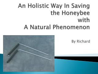 An Holistic Way In Saving the Honeybee with A Natural Phenomenon