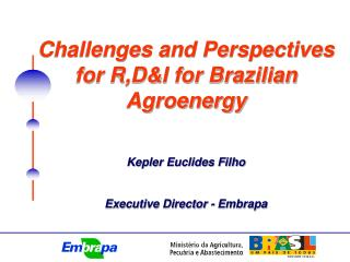 Challenges and Perspectives for R,D&I for Brazilian Agroenergy Kepler Euclides Filho