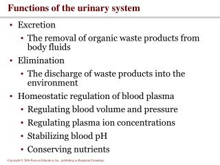 Functions of the urinary system