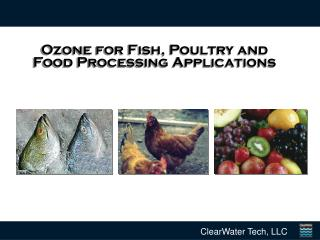 Ozone for Fish, Poultry and Food Processing Applications