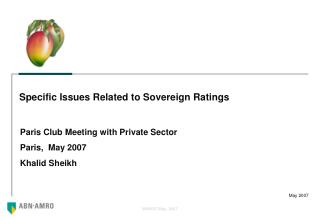 Specific Issues Related to Sovereign Ratings