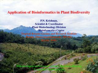 Application of Bioinformatics in Plant Biodiversity P.N. Krishnan,  Scientist & Coordinator