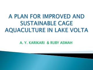 A PLAN FOR IMPROVED AND SUSTAINABLE CAGE AQUACULTURE IN LAKE VOLTA