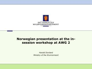 Norwegian presentation at the in-session workshop at AWG 2