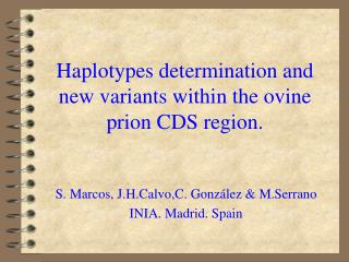Haplotypes determination and new variants within the ovine prion CDS region.