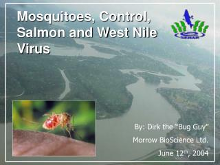 Mosquitoes, Control, Salmon and West Nile Virus
