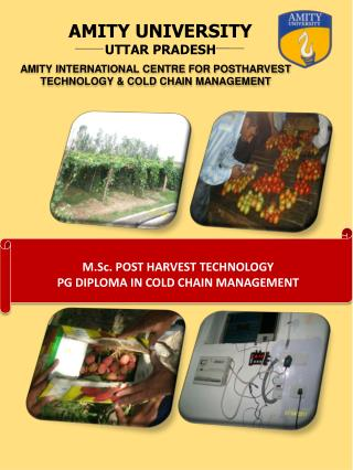 AMITY INTERNATIONAL CENTRE FOR POSTHARVEST TECHNOLOGY & COLD CHAIN MANAGEMENT