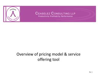 Overview of pricing model & service offering tool