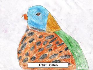 Artist: Caleb