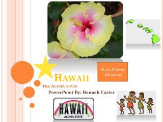 Hawaii the Aloha state