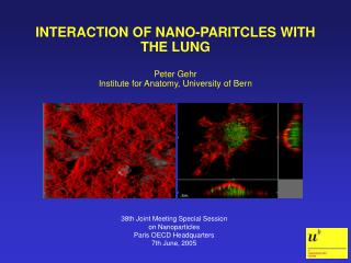 INTERACTION OF NANO-PARITCLES WITH THE LUNG   Peter Gehr Institute for Anatomy, University of Bern