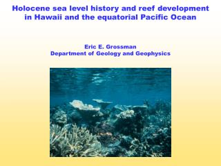 Holocene sea level history and reef development in Hawaii and the equatorial Pacific Ocean