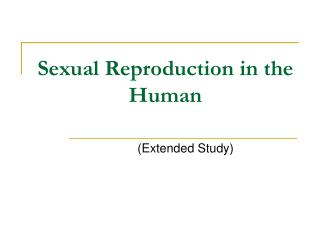 Sexual Reproduction in the Human