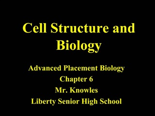 Cell Structure and Biology