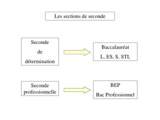 Les sections de seconde