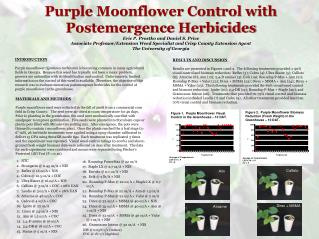 Purple Moonflower Control with  Postemergence Herbicides Eric P. Prostko and Daniel S. Price
