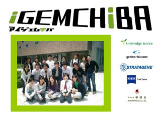 We fought iGEM at: