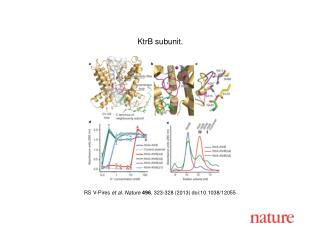 RS V-Pires  et al. Nature  496 , 323-328 (2013) doi:10.1038/12055