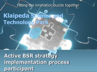 Active BSR strategy implementation process participant