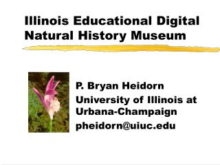 Illinois Educational Digital Natural History Museum