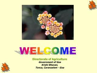 Directorate of Agriculture Government of Goa Krishi Bhavan, Tonca, Caranzalem - Goa