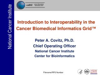 Introduction to Interoperability in the  Cancer Biomedical Informatics Grid ™