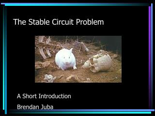 The Stable Circuit Problem