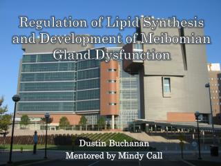 Regulation of Lipid Synthesis and Development of  Meibomian  Gland Dysfunction