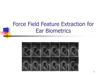 Force Field Feature Extraction for Ear Biometrics