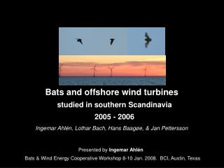 Bats and offshore wind turbines studied in southern Scandinavia 2005 - 2006