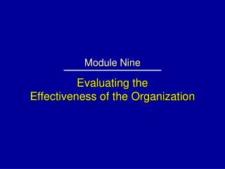 Evaluating the Effectiveness of the Organization