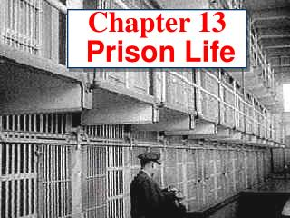 Chapter 13 Prison Life
