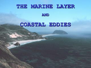 THE MARINE LAYER AND COASTAL EDDIES