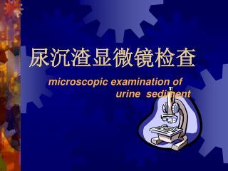 尿沉渣显微镜检查