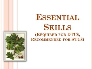 Essential Skills (Required for DTCs, Recommended for STCs)