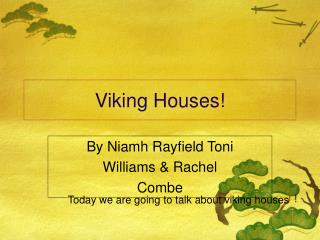 Viking Houses!