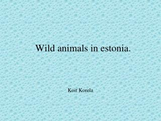 Wild animals in estonia.