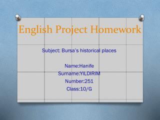 English Project Homework