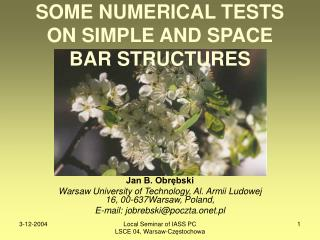 SOME NUMERICAL TESTS ON SIMPLE AND SPACE BAR STRUCTURES
